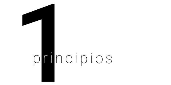 1-principios